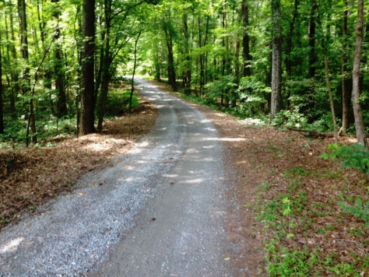 Patience and wisdom walk hand in hand down a gravel road